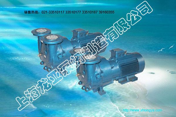 2BV2060系列水环式真空泵