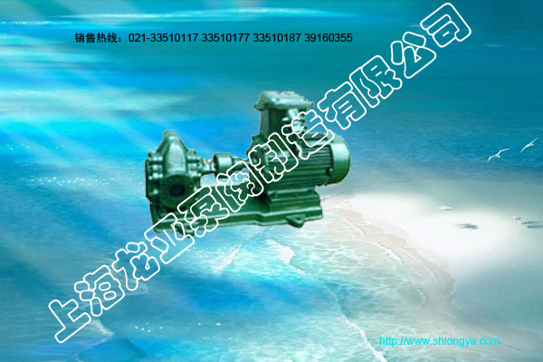 2CY型齿轮润滑泵