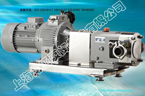 RY系列不锈钢转子泵